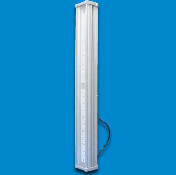 Светодиодный светильник Фито 100 1